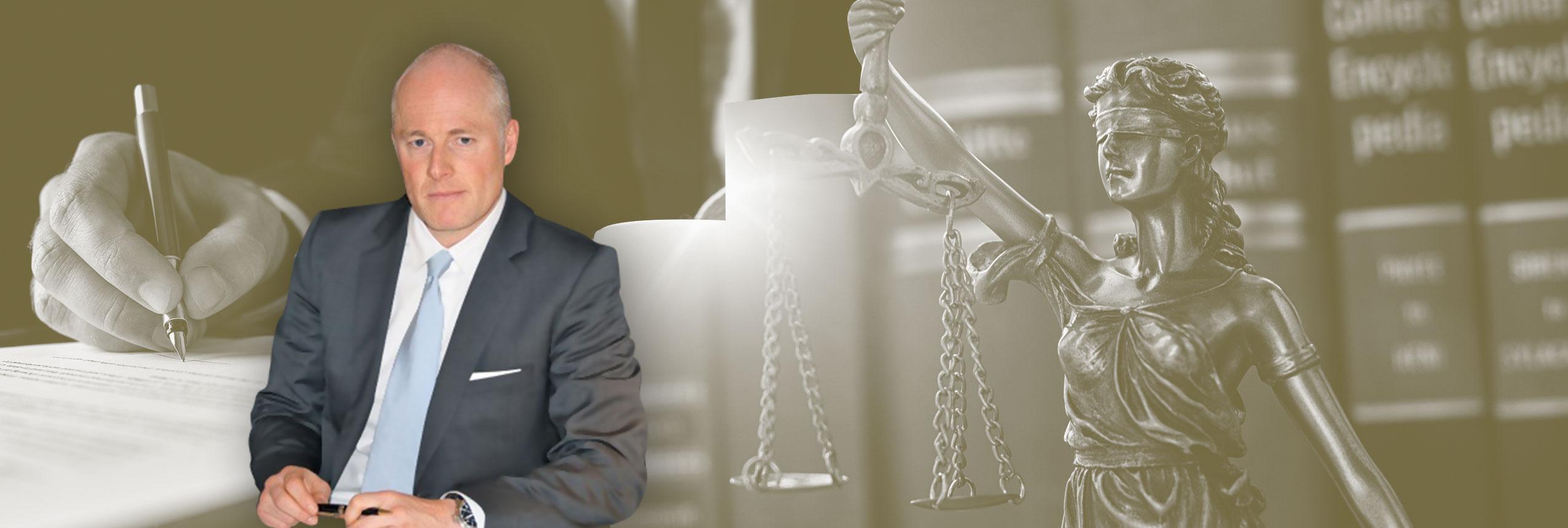 rechtsanwalt dr simon vita 1 - Vita